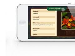BotanyMatch 1.0 Screenshot