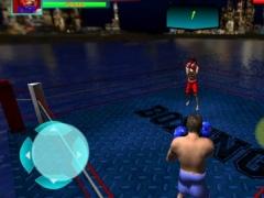 Boxing Champion 3D 1.0 Screenshot