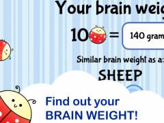 Brain Trainer with Ladybug 1.1.1 Screenshot