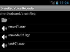 brainRec Voice Recorder 2.00 Screenshot