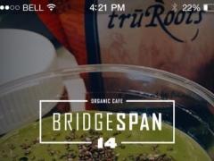 Bridge Span 14 2.4.25 Screenshot
