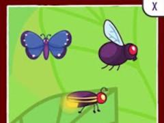 Bugs Toddler Preschool 5.1.1 Screenshot