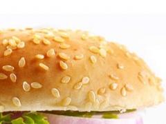 Burger Recipes HD 1.0 Screenshot