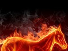 Burning Fire 3D Live Wallpaper 1 0 Free Download