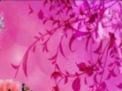 Butterflies & Flower Wallpaper 1.0.0 Screenshot