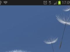 Cambridge Weather Widget 0.3.3.3 Screenshot