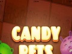 Candy Pet - Best Puzzel 1.0 Screenshot