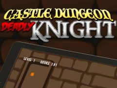 Castle Dungeon Deadly Knight Defenders: Danger In The Royal Kingdom 1.0 Screenshot