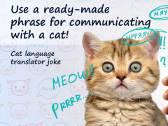 Cat language translator joke 2.0 Screenshot
