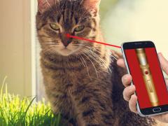 Cat Laser Games Pointer Joke 1.1 Screenshot