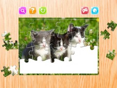 Cat Puzzle Game Animal Jigsaw Puzzles For Adults 1.0.1 Screenshot