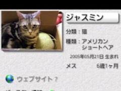 Cat's Pocketbook 4.0.3 Screenshot