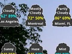 Catty Weather Widget 1.0 Screenshot