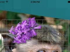 Cellfie: pixelate the world. 2.0 Screenshot