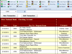 Checkbook for Excel 6.1 Screenshot
