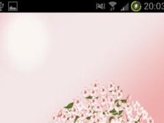 Cherry Blossom Wallpaper 1.0.2 Screenshot