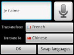 Chinese French Translator 1.0 Screenshot