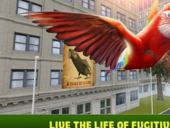 City Parrot Simulator 3D 1.0 Screenshot