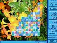 ClickPuzzle Gold 1.21 Screenshot