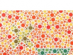 Color Blind Doctor 5.0 Screenshot