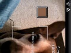 Color Reader (Donate) 1.03 Screenshot