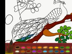 Colouring Krishna 1.01 Screenshot