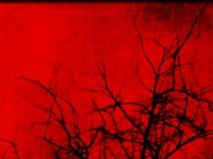 Conduit Nocturnal GHOST EVP 1 01 Free Download