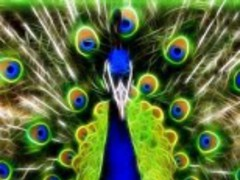 Cool Art Backgrounds 6.0 Screenshot