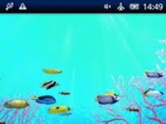 Coral Reefs World Trial 1.1.2 Screenshot