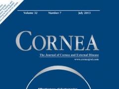 Cornea 1.2 Screenshot