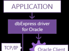 dbExpress driver for Oracle 6.10 Screenshot