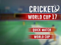 Cricket Cup 1.1.4 Screenshot