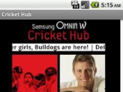 Cricket Hub 1.0 Screenshot