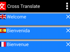 Cross translate 1.0.2 Screenshot