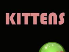 Crystal Kitten Wallpapers 3.0.1 Screenshot