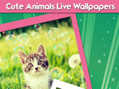 Cute Animals Live Wallpapers 1.3 Screenshot