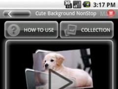 Cute Background NonStop 1.0.0 Screenshot