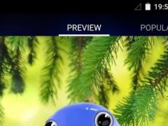 Cute Bird Live Wallpaper 1.2 Screenshot