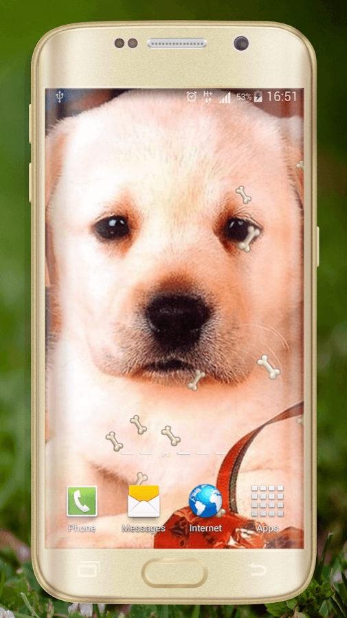 Cute Dogs Live Wallpaper 1.5 Free Download