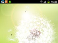 Dandelion Live Wallpaper 1.0.1 Screenshot
