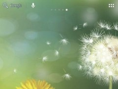 Dandelions field 1.3 Screenshot