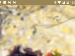 Dard-e-ishq Shayari 1.0 Screenshot