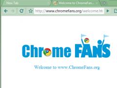 Dark Seagreen Google Chrome Theme 1.00 Screenshot
