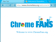 Deep Skyblue Google Chrome Theme 1.00 Screenshot