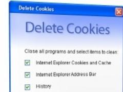 Delete History, Cookies, Cache 1.2 Screenshot