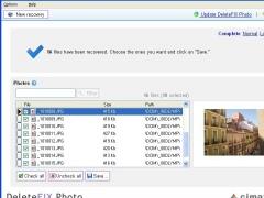 DeleteFIX Photo recovery 2.00 Screenshot