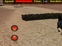 Desert Horse Racing Adventure 1.0 Screenshot