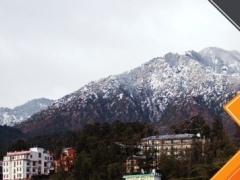 Dharamsala Tourism Guide 1.0 Screenshot