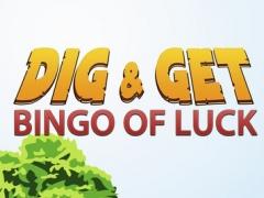 Dig & Get - Bingo of Luck 1.0.1 Screenshot