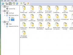 Disc Collection 2.7 Screenshot